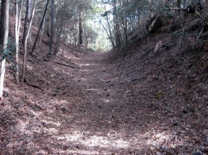 The first trail hill